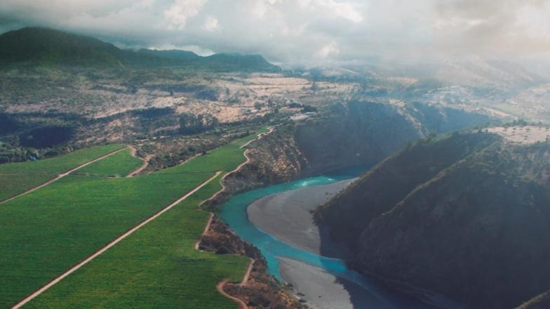 Vignoble fluvial de Peumo - Concha y Toro