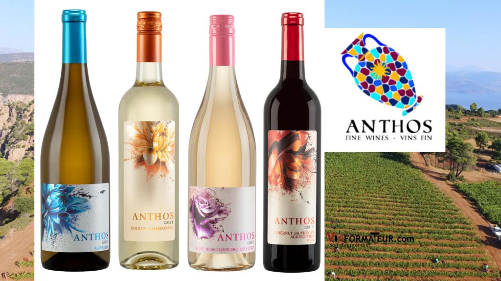 Les nouveaux vins grecs Anthos 4 bouteilles de vin