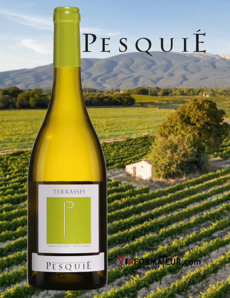 Bouteille de Terrasses, Château Pesquié, France, AOC Ventoux, vin blanc bio, 2019 avec vignoble en background