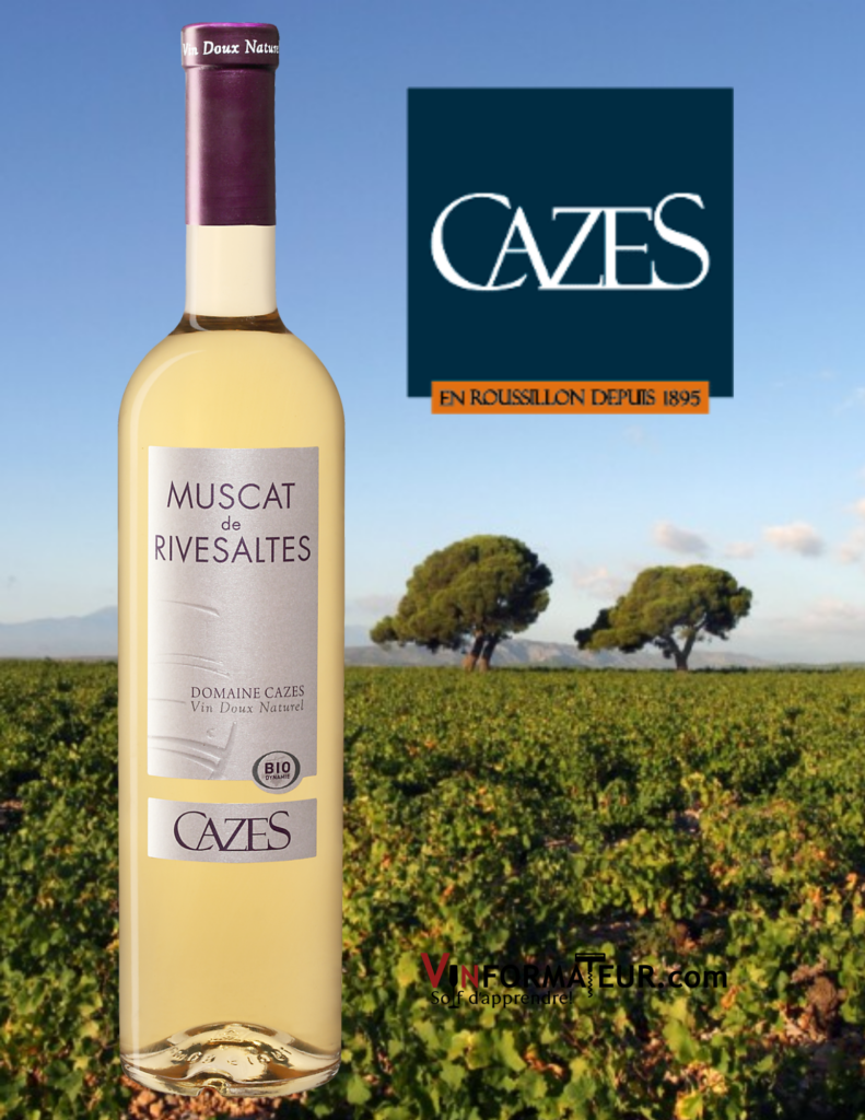 Bouteille de Muscat de Rivesaltes, Domaine Cazes, France, Languedoc-Roussillon, 2019 avec vignoble en arrière-plan