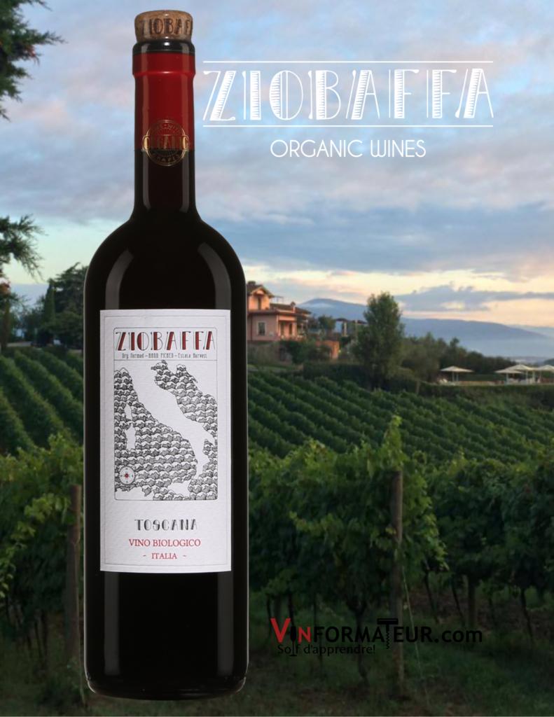 Bouteille de vin Ziobaffa 2015 avec vignoble en background