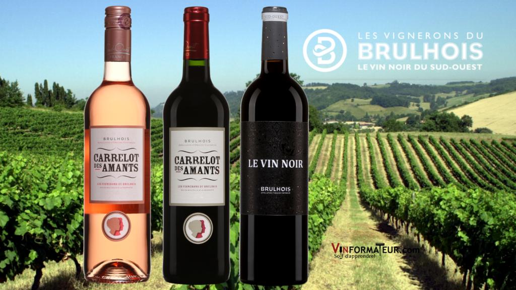 3 bouteilles de vins des Vignerons de Brulhois avec vignoble en arrière-plan