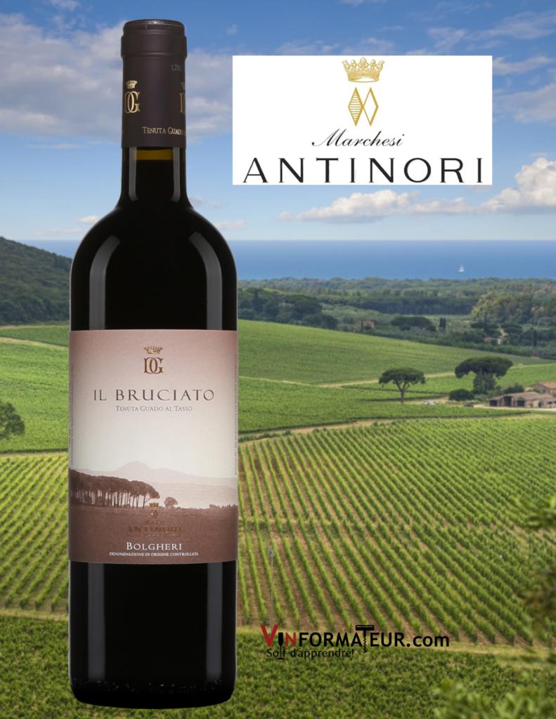 Bouteille de Il Bruciato, Italie, Toscane, Antinori, Tenuta Guado Al Tasso, vin rouge, 2019 avec vignobles en arrière-plan