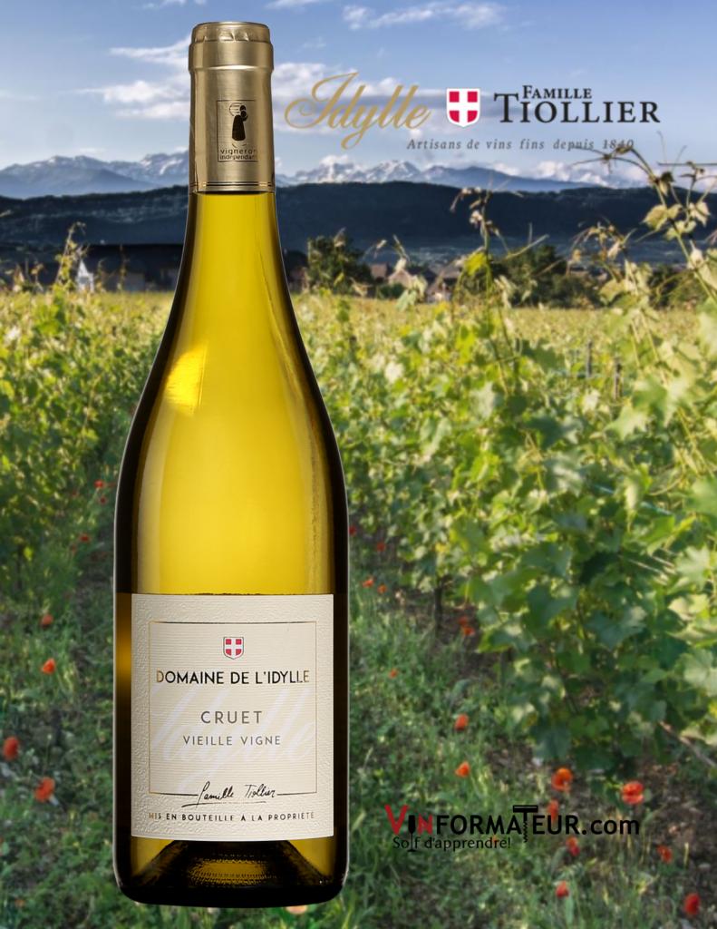 Bouteille de vin Domaine de l'Idylle, Cruet, Vieilles Vignes, vin blanc, France, Savoie et Buguey, 2019 avec vignoble en arrière-plan