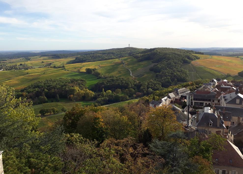 Château de Sancerre et vignoble