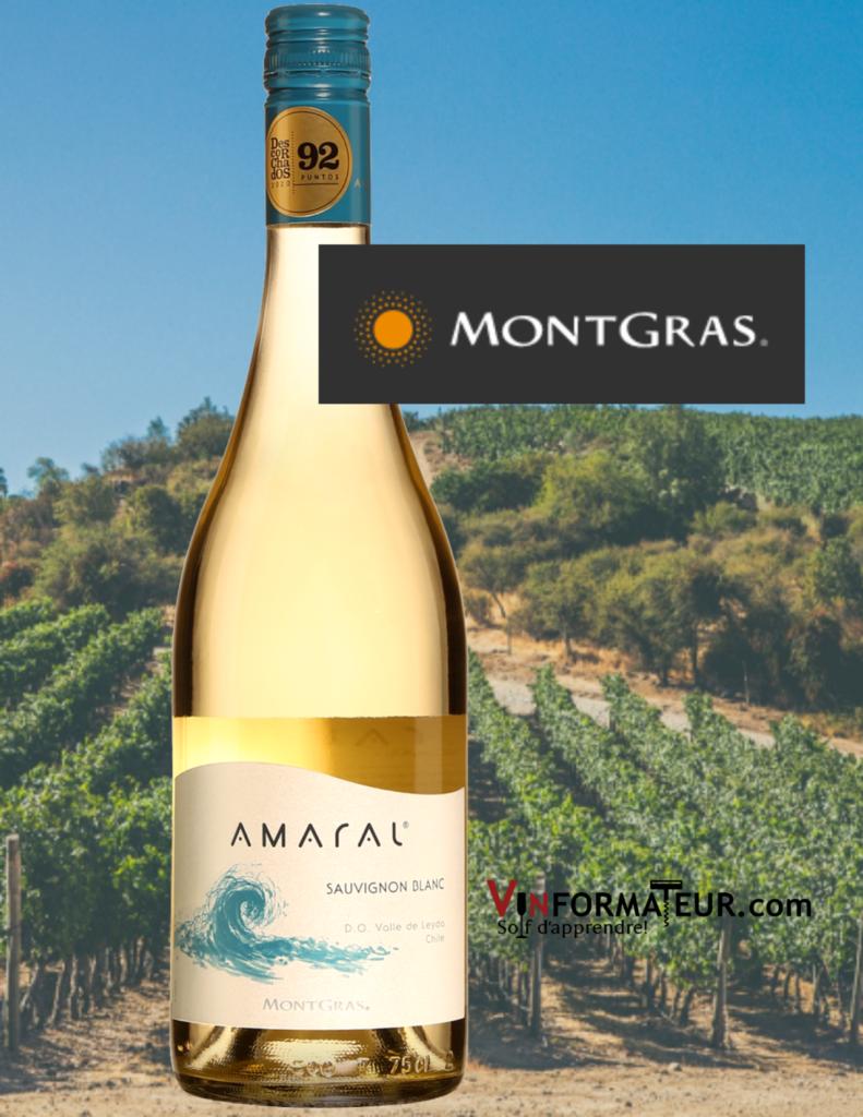 Bouteille Amaral, Sauvignon Blanc, Chili, Aconcagua, Valle de San Antonio, vin blanc Bio, Montgras, 2019 avec vignobles en arrière-plan