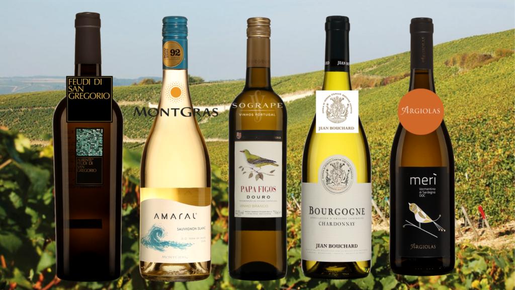 Bouteilles de Cinq vins blancs d'Italie, du Chili, de France et du Portugal avec vignobles en arrière-plan