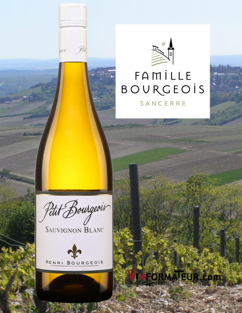 Bouteille de Petit Bourgeois, Sauvignon blanc, Val de Loire, 17,20$, 2019 avec vignobles en arrière-plan