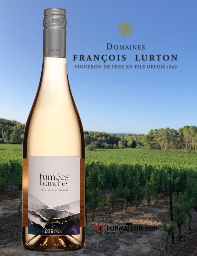 Bouteille de Fumées Blanches, Gris de Sauvignon, Vin de France, 2020 avec vignoble en arrière-plan