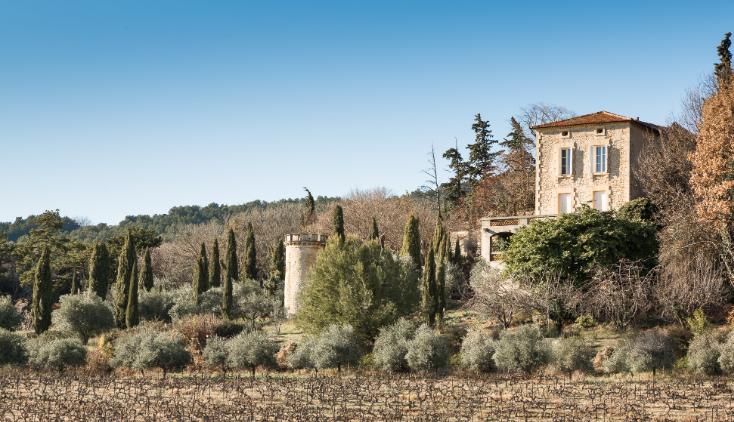 Château de Rouanne et vignobles