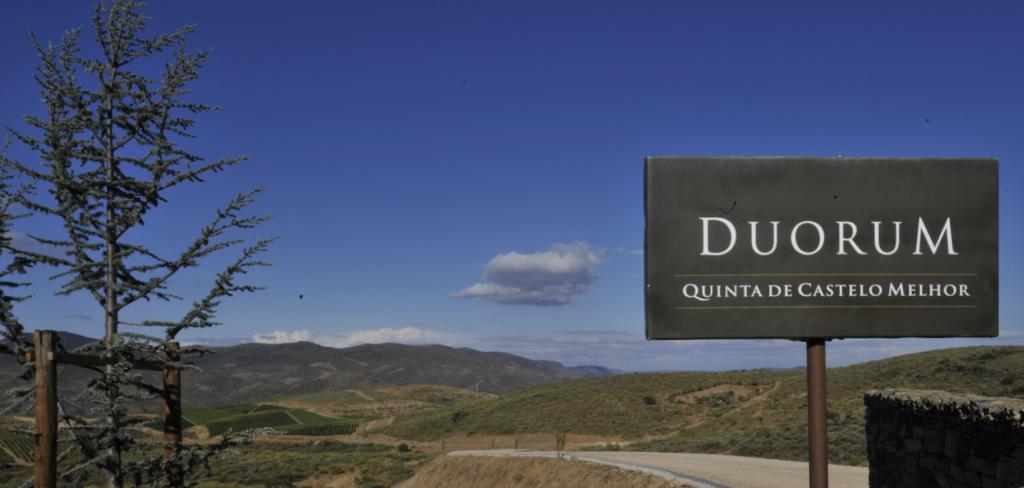 Vignobles du projet Duorum