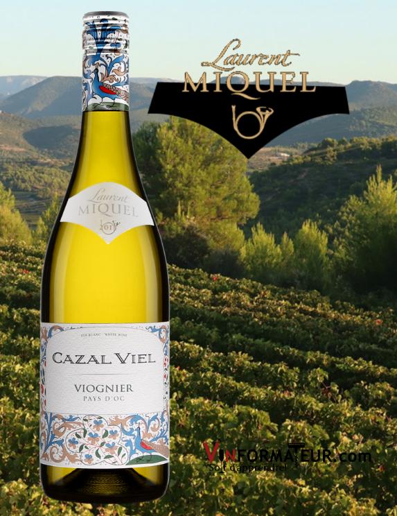 BOuteille de Cazal Viel, Viognier, France, Languedoc-Roussillon, 2019 avec vignoble eren arrère-plan