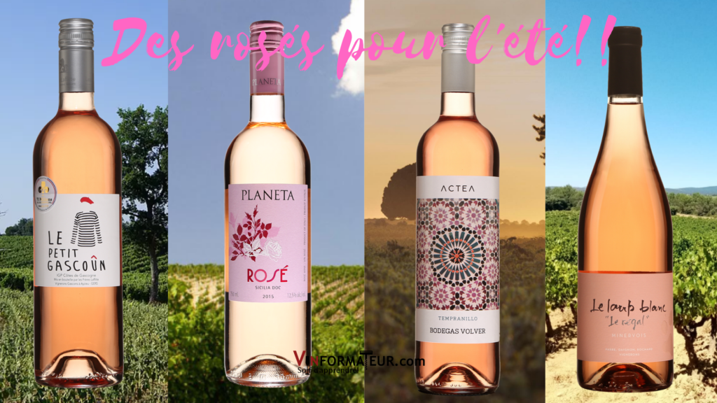 4 bouteilles de vins rosés Le Petit Gascoun, Planeta, Actea, Le Loup Blanc avec vignobles en arrière-plan
