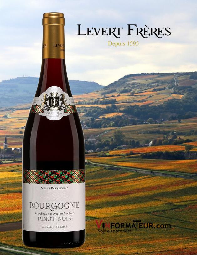 Bouteille de Levert Frères, Pinot Noir, Bourgogne, 2017 avec vignoble en arrière-plan