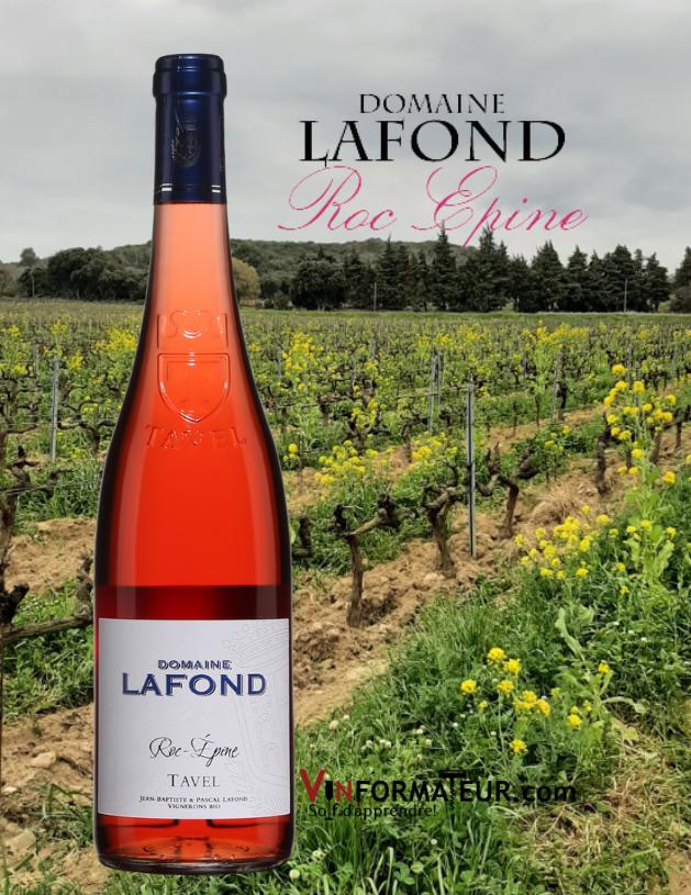 Bouteille de Tavel, Roc-Épine, Domaine Lafond, France, Vallée du Rhône méridionale, Tavel, vin bio, 2019 avec vignoble en arrière-plan