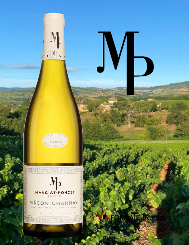 Bouteille Mâcon-Charnay, Les Chênes, France, Mâconnais, Mâcon-Charnay, vin blanc, 2019 avec vignoble en arrière-plan