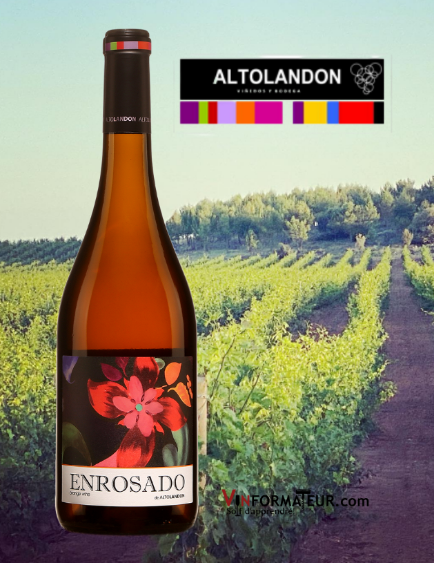 Bouteille de Enrosado, AltoLandon, Espagne, Manchuela, vin orange bio/nature/vegan, 2020 avec vignoble en arrière-plan