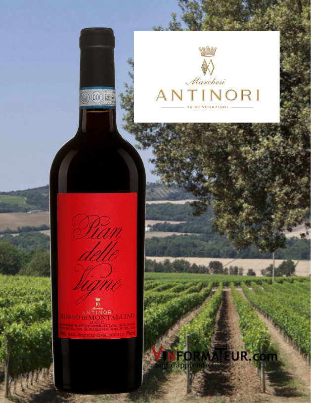 Bouteille de Pian delle Vigne, Rossi di Montalcino DOC, Italie, Toscane, Antinori, 2019 avec vignoble en arrière-plan