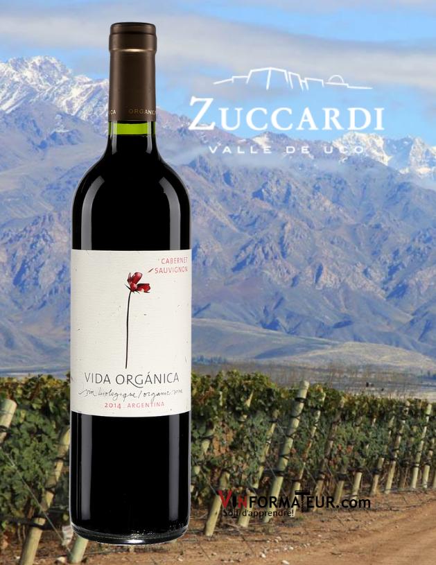 BOuteille de Vida Organica, Sauvage, Cabernet-Sauvignon, vin rouge bio, Argentine, Mendoza, Zuccardi, 2020 avec vignoble en arrière-plan
