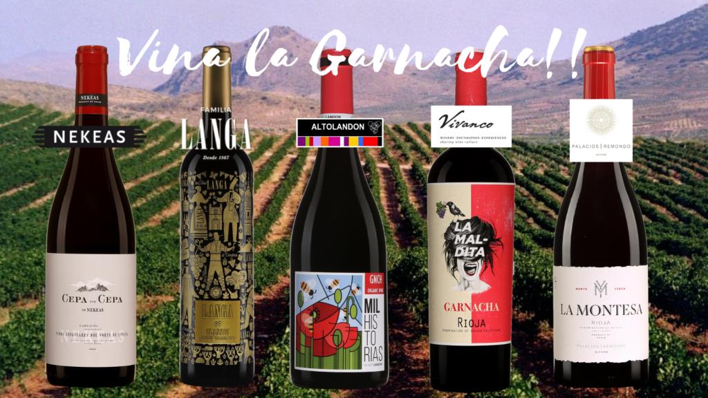 Cinq vins de Garnacha à découvrir!