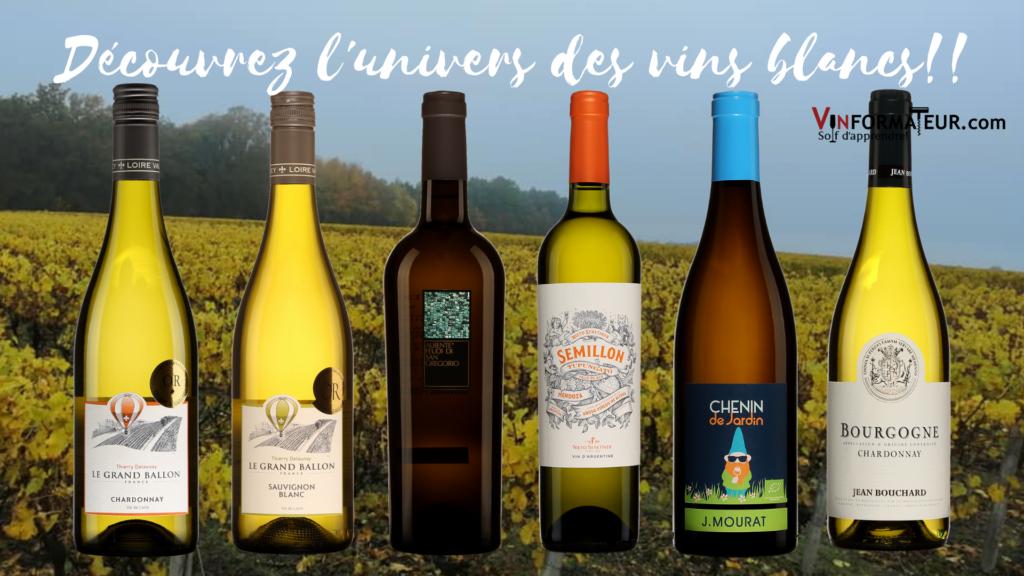 6 bouteilles de vins blancs à découvrir!