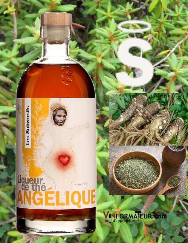 Bouteille de Les Subversifs, Liqueur de Thé Angélique avec herbes en arrière-plan