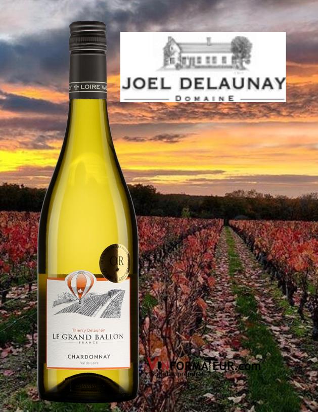 Bouteille de Le Grand Ballon, Chardonnay, France, Val de Loire, Thierry Delaunay, vin blanc, 2020 avec vignoble en arrière-plan