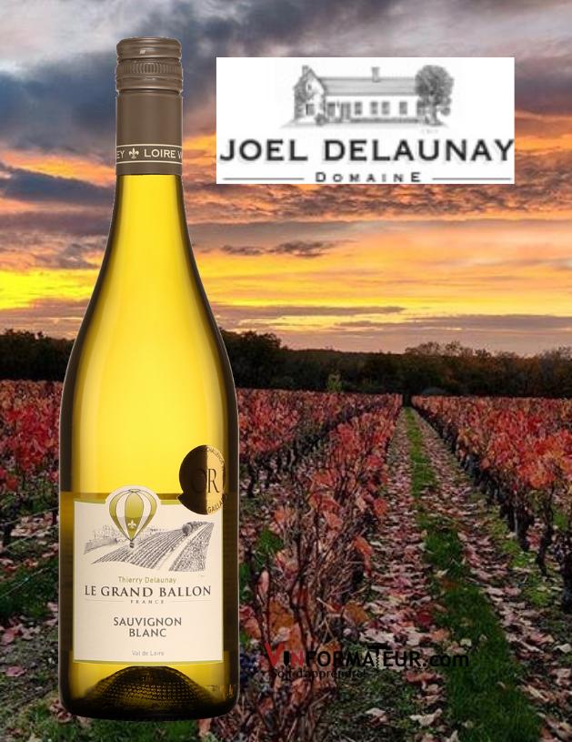 Bouteille de Le Grand Ballon, Sauvignon blanc, France, Val de Loire, Thierry Delaunay, vin blanc, 2020 avec vignoble en arrière-plan