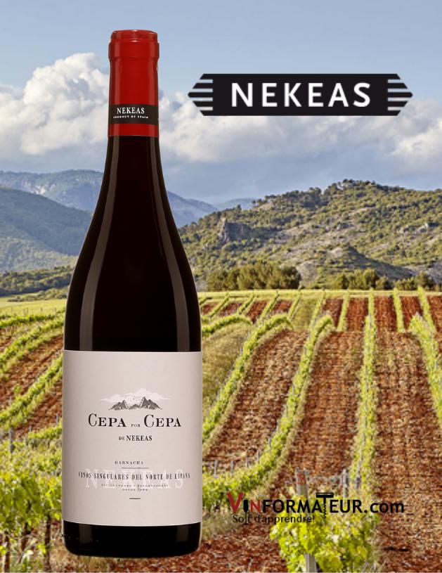 Bouteille de Cepa por Cepa, Espagne, Navarre, Bodegas Nekeas, 2019 avec vignoble en arrière-plan