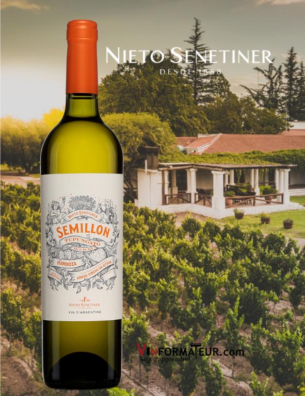 Bouteille de Sémillon, Tupungato, Nieto Senetiner, Argentine, Mendoza, Nieto Senetiner, vin blanc, 2018 avec chai en arrière-plan