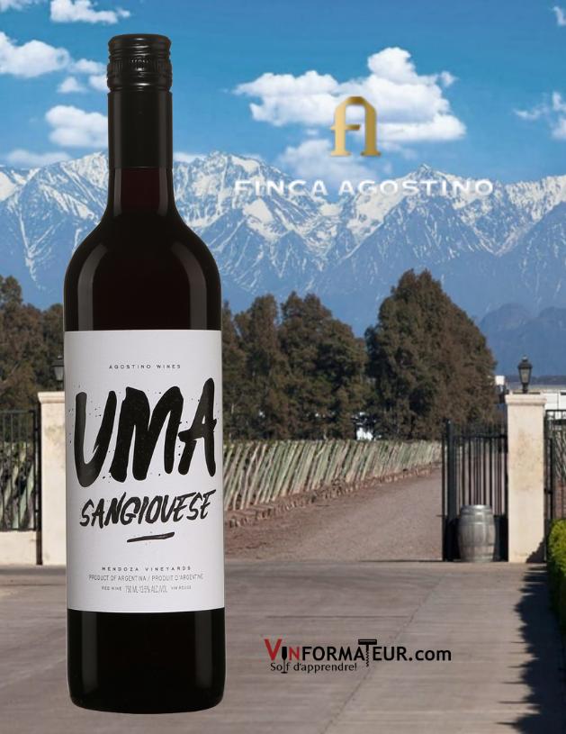 Bouteille Uma, Sangiovese, Argentine, Mendoza, Finca Agostino, 2020 avec vignoble en arrière-plan