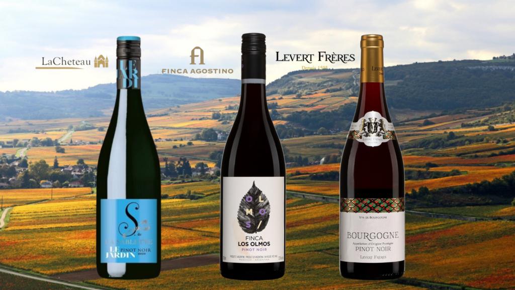 3 bouteilles de Pinot Noirs à prix abordables avec vignobles de bourgogne en arrière-plan