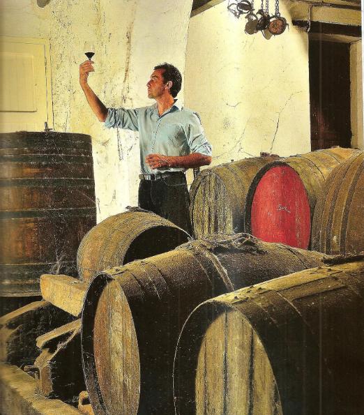 Georges Puig vigneron dans son chai du Domaine Puig-Parahy