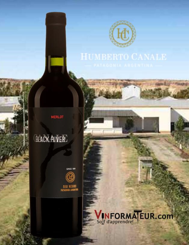 Bouteille de Black River, Merlot, Argentine, Pantagonie, Rio Negro, vin rouge, 2019 abvec vignobles en arrière-plan