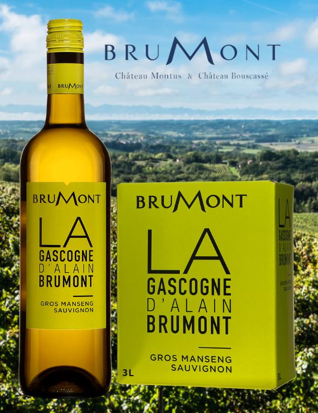 Bouteille et 3L de Brumont, Côtes de Gascogne, France, Sud-Ouest, 750ml et 3L avec vignobles en arrière-plan