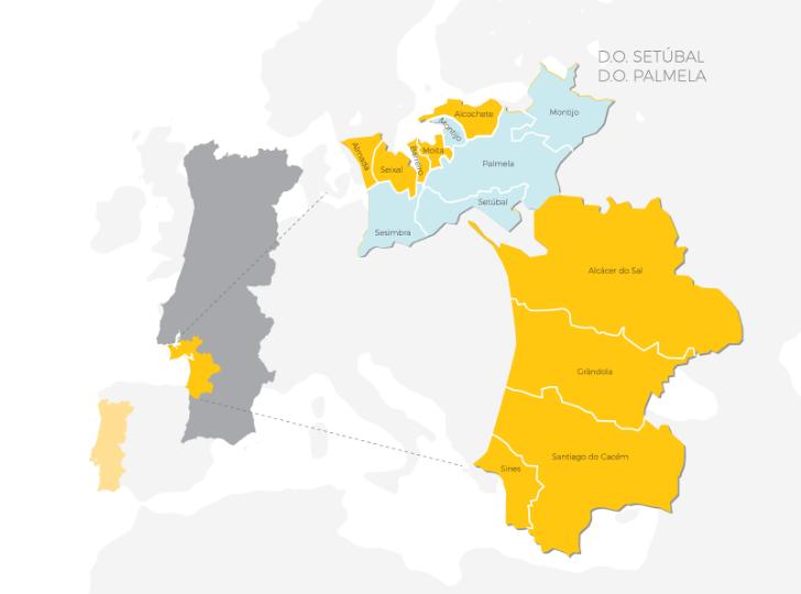 Carte viticole de la Peninsule de Setubal