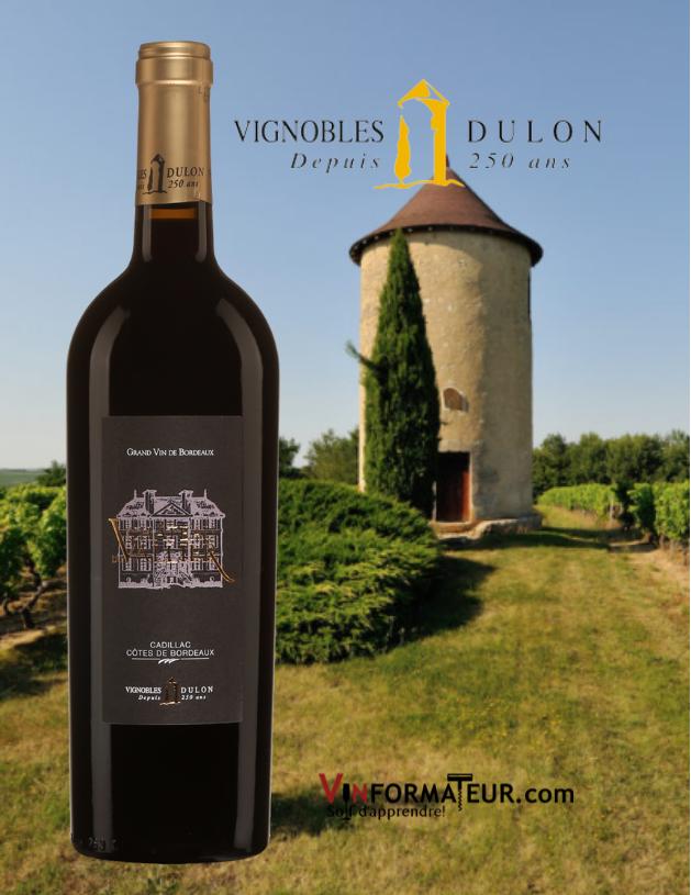 Bouteilled de Château du Vallier, France, Bordeaux, Cadillac Côtes de Bordeaux, Vignobles Dulon, 2015 avec tourelle et vignoble en arrière-plan
