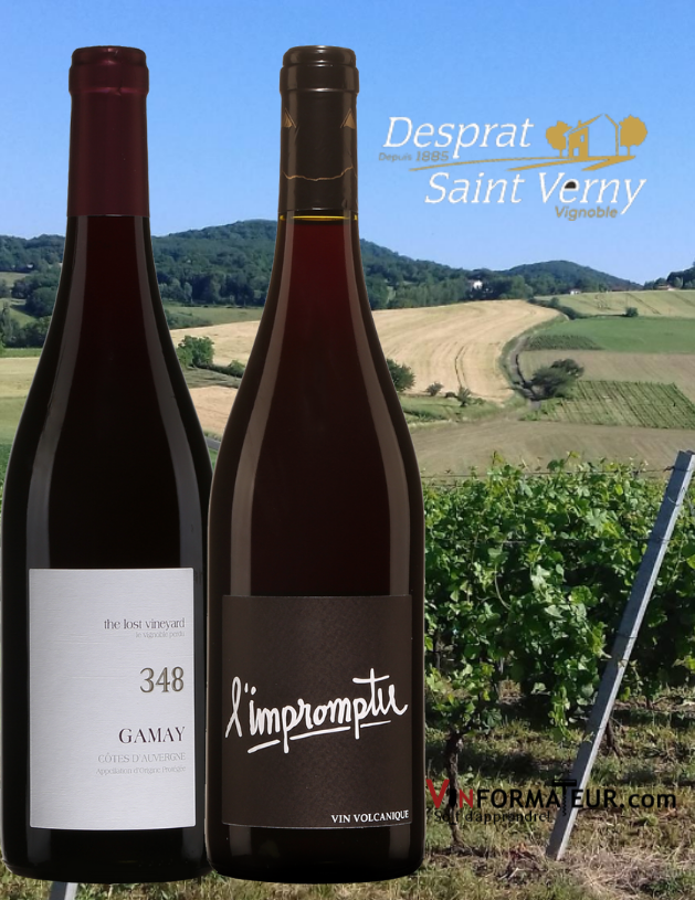 Deux bouteilles Gamay 348 et l'Impromptu 2018 Vignobles Saint Verny avec vignobles en arrière-plan