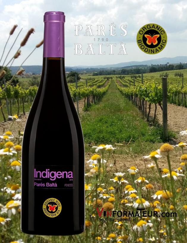 Bouteille de Indigena, Parés Baltà, Espagne, Penedès, vin rouge bio/vegan, 2018 avec vignobles en arrière-plan