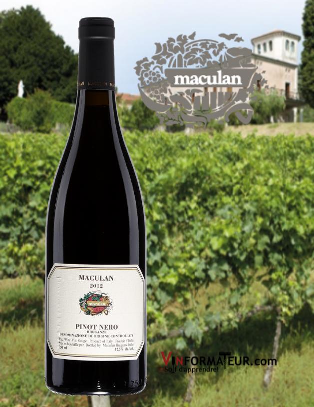 Bouteille de Maculan, Pinot Nero (Pinot Noir), Italie, Vénétie, Breganze, vin rouge, 2019 avec vignobles en arrière-plan