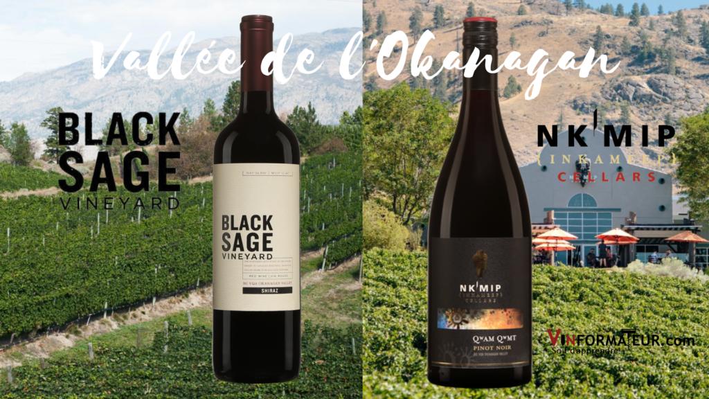 2 bouteilles de vins rouge de la Vallée de l'Okanagan: Black Sage Shiraz 2017 et Nk'Mip Pinot Noir 2019 avec vignobles en arrière-plan