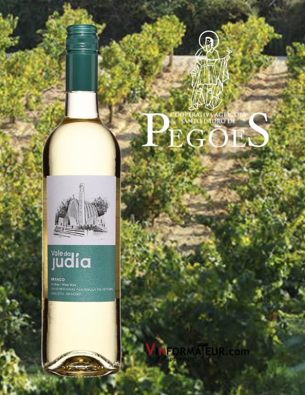 Bouteille de Vale da Judia, Branco, Portugal, Péninsule de Setubal, vin blanc, 2020 avec vignobles en arrière-plan