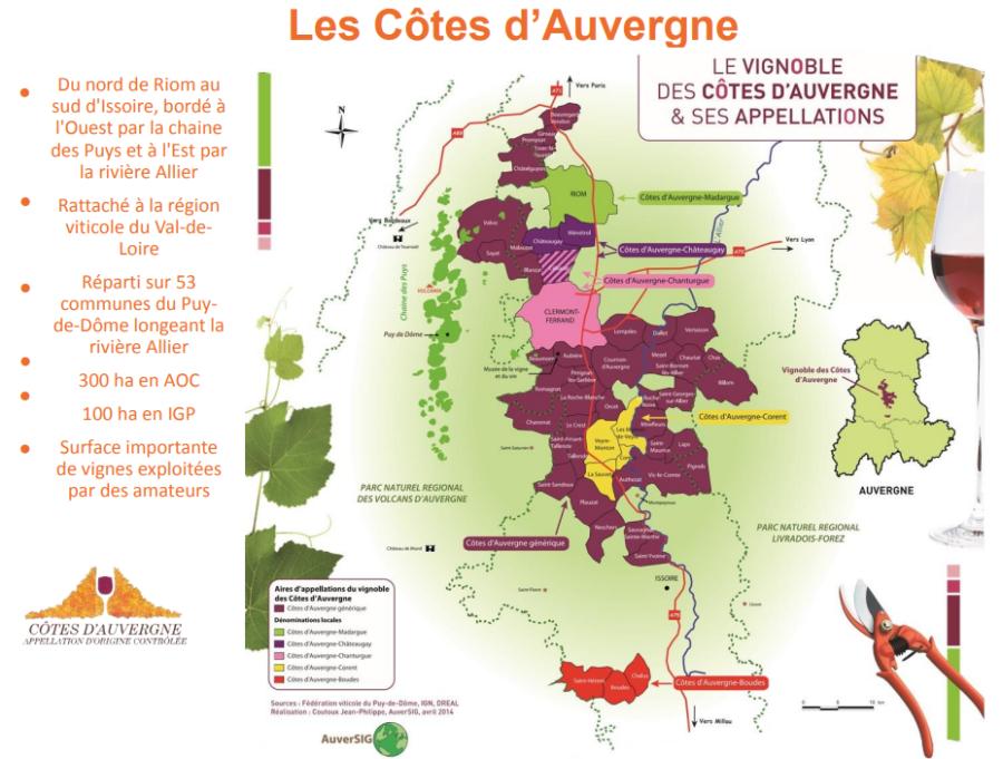 Carte viticole des Côtes de l'Auvergne