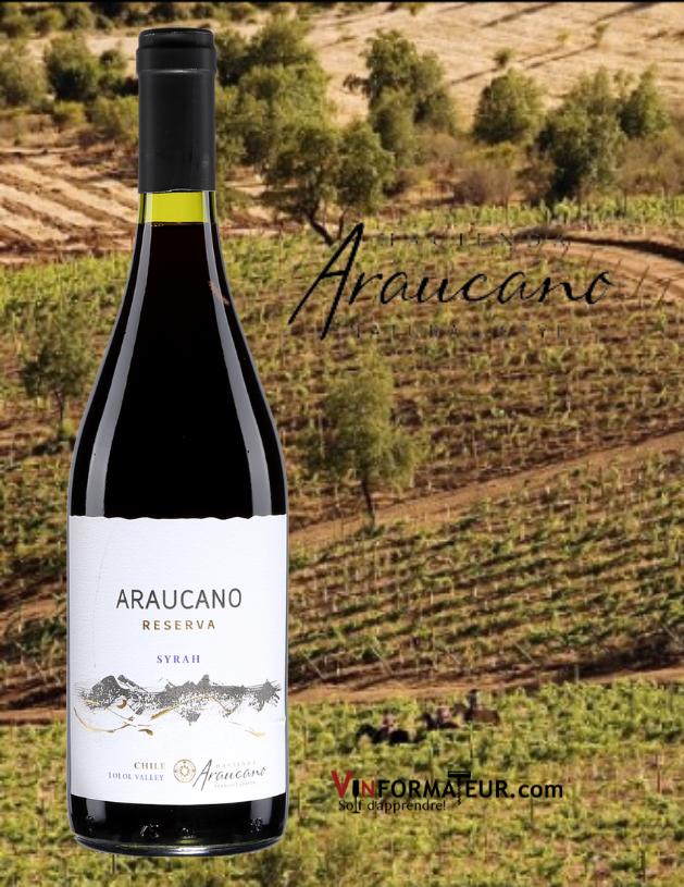 Bouteille de Araucano, Syrah Reserva, Chili, Valle Central, Lolol, Vina Hacienda Araucano, François Lurton, vin rouge, 2020 avec vignobles en arrière-plan