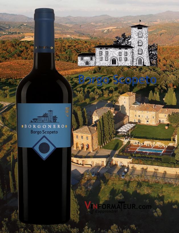 Bouteille de Borgonero, Borgo Scopeto, Italie, Toscana IGT, 2017 avec vignoble en arrière-plan
