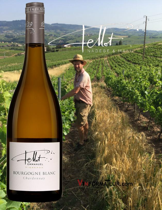 Bouteille de Chardonnay, Bourgogne blanc (Beaujolais), Domaine Emmanuel Fellot, vin blanc nature, 2018 avec vignobles en arrière-plan