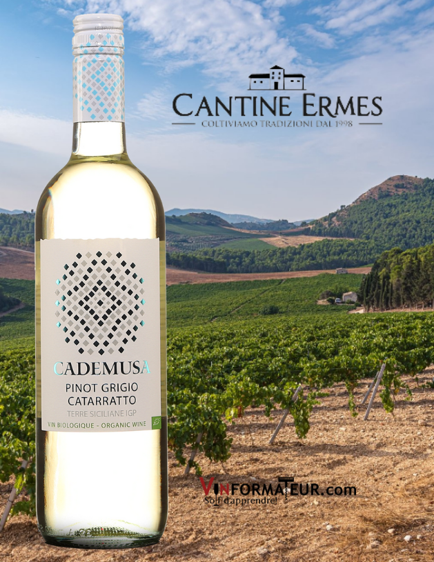 Cademusa, Pinot Grigio, Catarratto, Italie, Sicile, Cantine Ermes, vin blanc bio, 2019