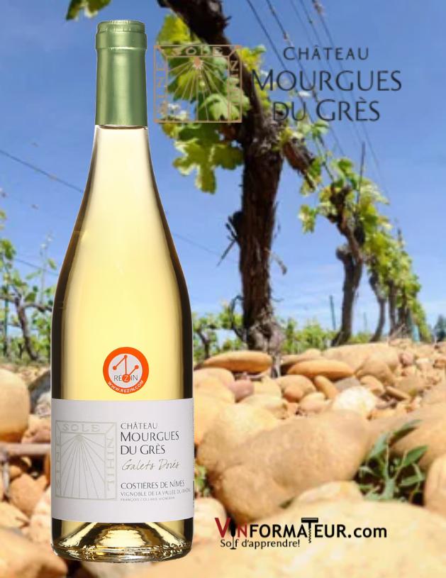 Bouteille de Château Mourgues du Grès, Les Galets Dorés, Vallée du Rhône, Costière de Nîmes, François Collard, vin blanc bio, 2019 avec vignobles en arrière-plan