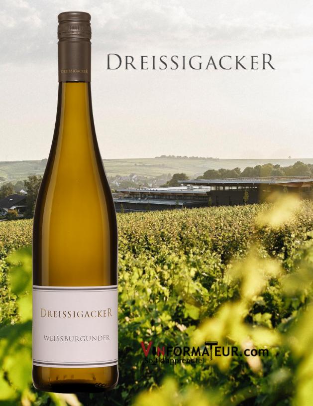 Dreissigacker Weissburgunder, Allemagne, Rheinhessen, Trocken, Organic, 2019