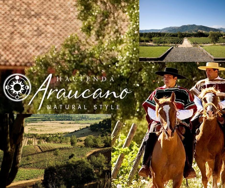 Hacienda Araucano chai et vignobles